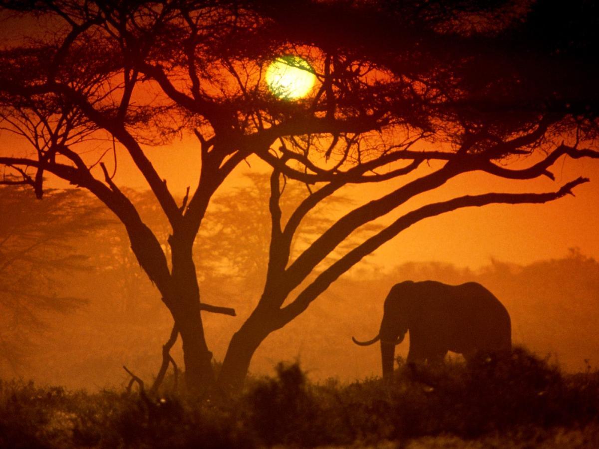 paesaggio kenya